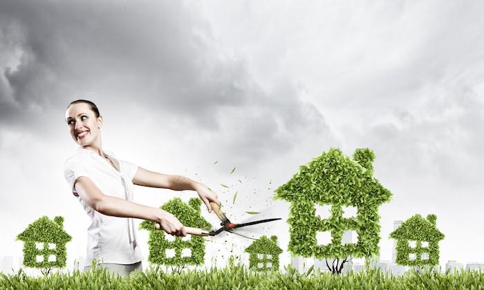 Umweltschutz & Immobilienbewertung